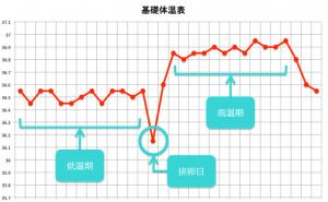 基礎体温表 (2)