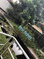 タイ・サムイ島研修に行ってきました!